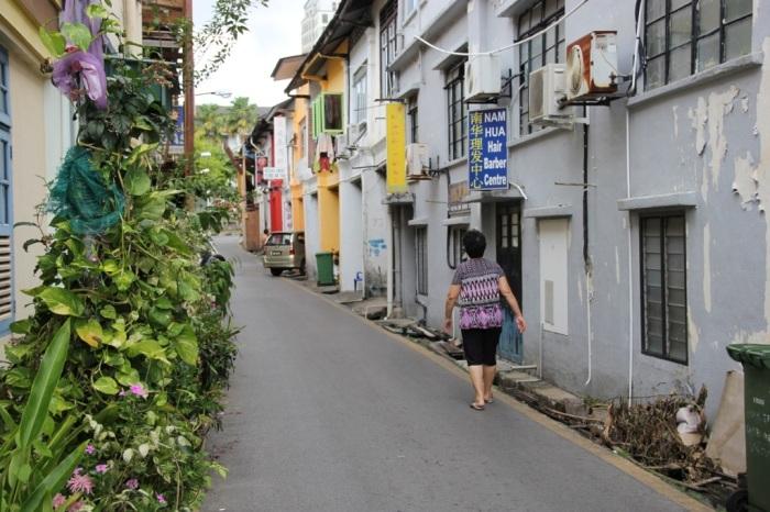 Kuching? Ka-Chow! Top 5 things to do in Kuching, Borneo